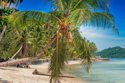 10 Fotos die Lust nach einem Urlaub auf Koh Samui machen