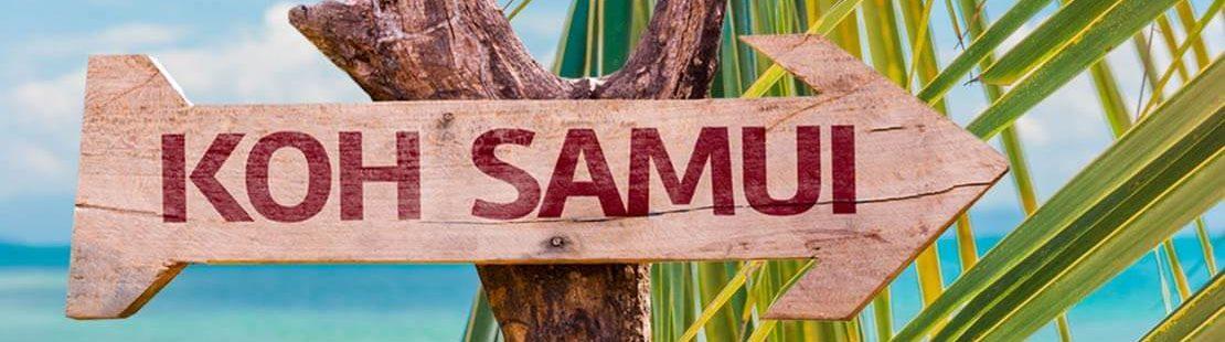 Palme auf Koh Samui